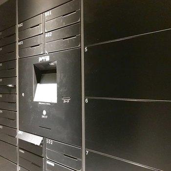 郵便受けと宅配ボックスはエントランスにまとまっています。