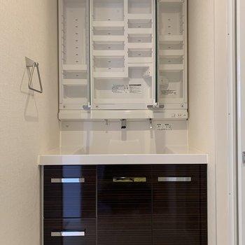 洗面台の鏡裏収納はポケットが多め。コンセントは計3か所にありますね。