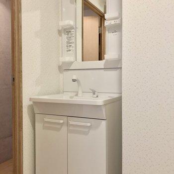 洗面台は普通サイズ!(※写真は3階の同間取り別部屋のものです)