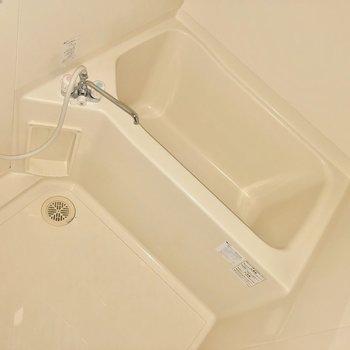そこまで狭くないので、お湯にしっかりつかれそう。※写真は前回募集時のものです