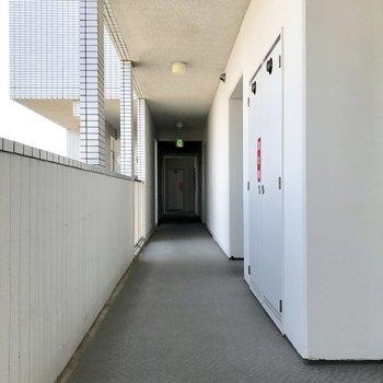 至ってシンプルな共用廊下。
