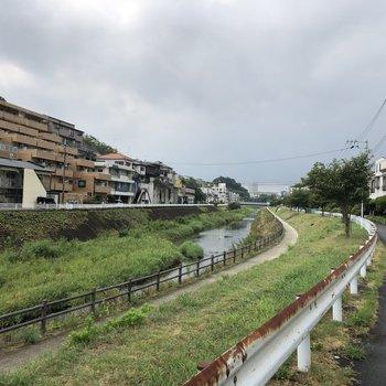 すぐそばには川が流れていて、緑も置く穏やかな雰囲気。
