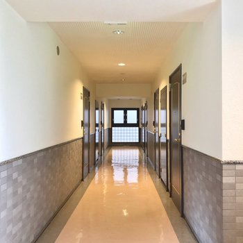 共用廊下は室内で、綺麗に清掃されている印象です。