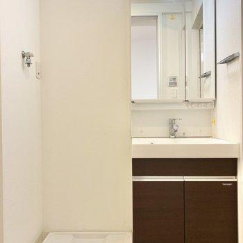 独立洗面台は鏡裏収納付き。洗面台の下のスペースに洗剤などしまうといいかもですね。