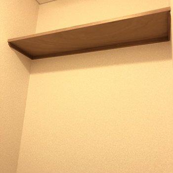 上に予備のトイレットペーパーなどを置いておける棚があります