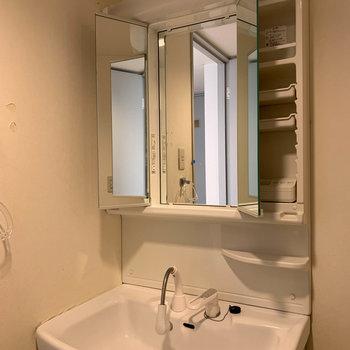 シャワーノズルタイプの洗面台です※写真はクリーニング前のものです