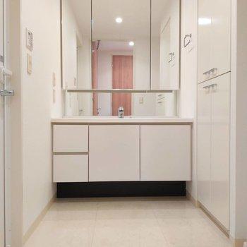 サニタリーのドアを開けると、大きな鏡のある洗面台。※写真は前回掲載時のものです