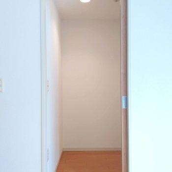 【寝室】納戸は人1人入っても少しゆとりのある印象。物置には十分なスペース。※写真は前回掲載時のものです