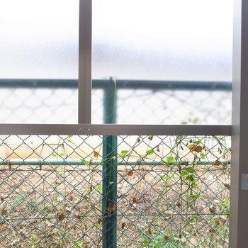 眺望は、目隠しと緑のツタ。外からの視線は問題なさそうです。