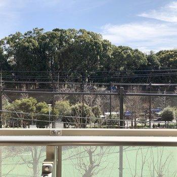 眺望は、グラウンドと代々木公園です。
