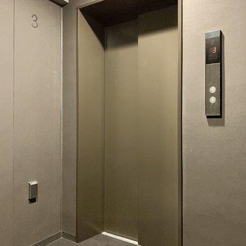 エレベーターにはペット乗降中を示す〈ペットボタン〉がありました。