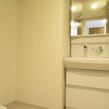 ゆとりのある洗面脱衣所です