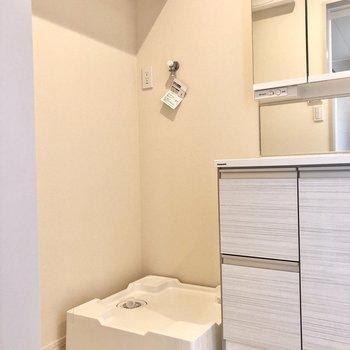 洗濯機置き場は脱衣所に。脱いだ服をすぐ洗えますね。