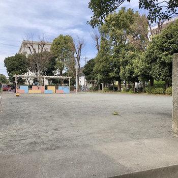 少し歩くと、広い公園。