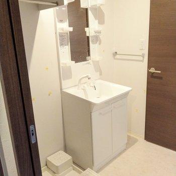 広々洗面台。洗剤などは洗濯機置場上に。