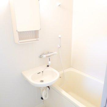 洗面台とお風呂の2点セット。シャワーでサッとお掃除できるメリットも◎