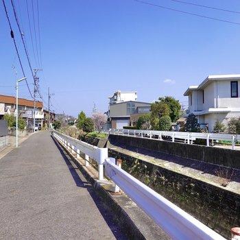 周辺は穏やかな住宅街。散歩も楽しめそうです。