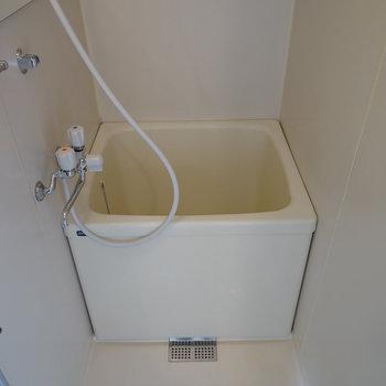お風呂もコンパクトめです。※写真は反転間取り別部屋の写真
