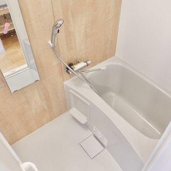 もう一つの扉は浴室に通じています。