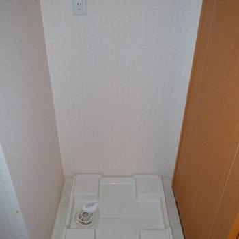 洗濯パンはお風呂の向かいにあります。