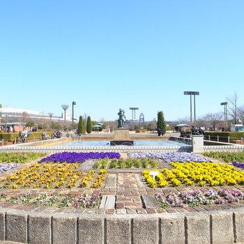 【周辺環境】こちらが長居公園。広い敷地内には木が生い茂り、みんなの憩いの場になっています。