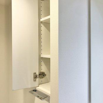 鏡の横には洗剤やタオルが入る棚もありました。※写真は1階の同間取り別部屋のものです