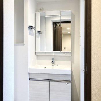 洗面台は鏡を開くと収納になっていましたよ。