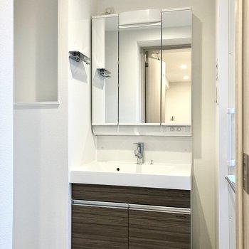 洗面台は鏡部分を開くと収納になっている機能的なもの。
