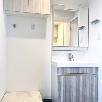 洗面台は鏡を開くと収納になっている機能性の高いものでした。
