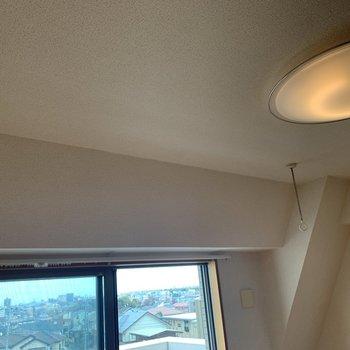 【洋室】明るさ調節ができるライトと、取り外しできる室内物干し付きです。