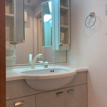 独立洗面台はがっしりしたものが。コンセントは2箇所にありました。