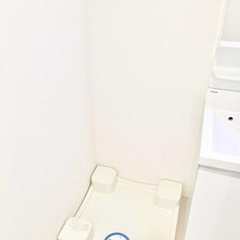 その横に洗濯パン。(※写真と文章は12階の同間取り別部屋のものです)