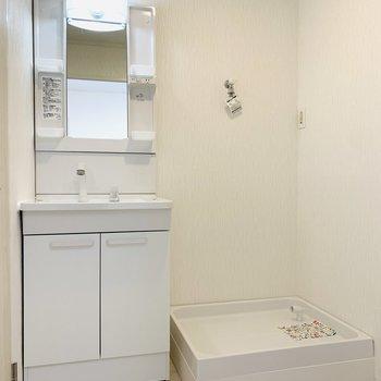 水回りに入って正面は洗面所と洗濯機置き場。