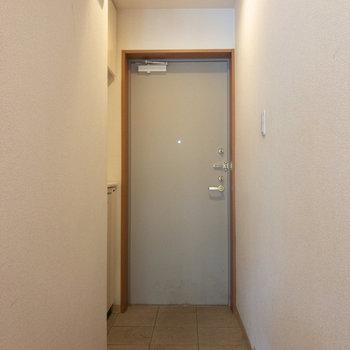 シンプルなドアです。