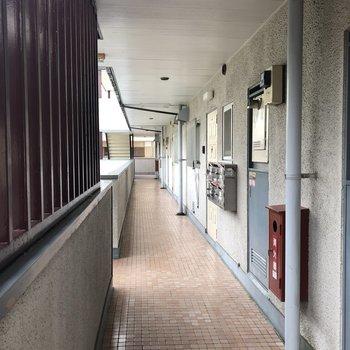 305号室の郵便受けは2階部分にあります。