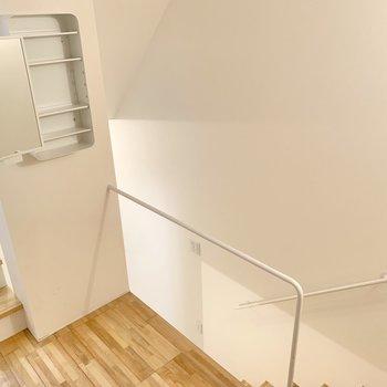 階段を下るとサニタリースペースがあります。