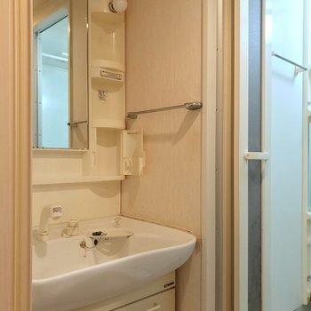 脱衣所には大きな洗面台。朝の支度もラクラクです。(※写真は清掃前のものです)