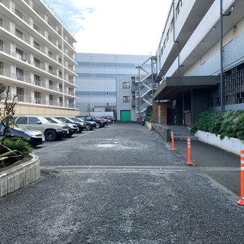 入り口前のズラーっと駐車場。