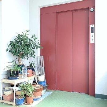 お部屋まではエレベーター。