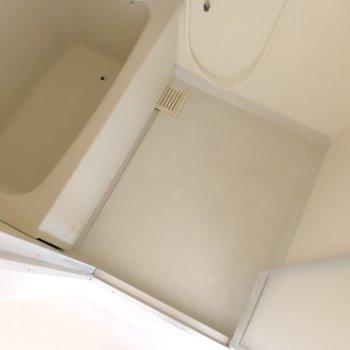 浴室はシンプル。