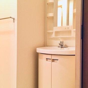 洗面台は水回りの入り口にありました◎(※写真は6階の同間取り別部屋のものです)