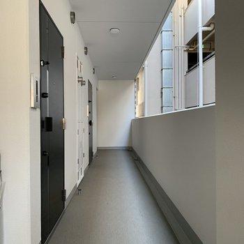 新築らしい綺麗な通路とドアですね