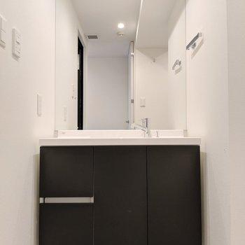 特大のミラー付き独立洗面台(※写真は2階の同間取り別部屋のものです)
