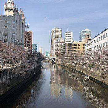 お部屋の近くには目黒川が。春は桜がたくさん咲きますよ。