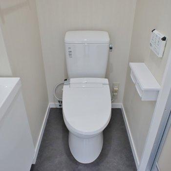 隣におトイレのアメセパタイプ※写真は同タイプの別室。