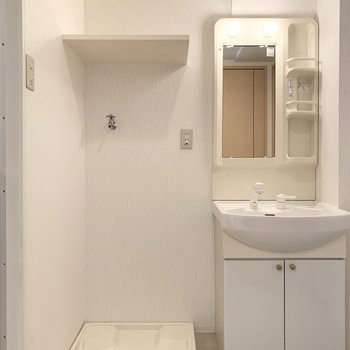 まずは正面に洗濯機置場とシャンプードレッサー。