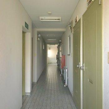 共用廊下は室内で、少し暗めでした。