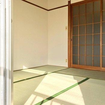畳の緑と陽だまり。落ち着く空間◯