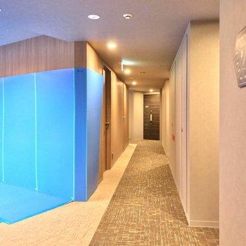 六角形の建物なのでお部屋の配置が特殊。エレベータは中央に配置されています。