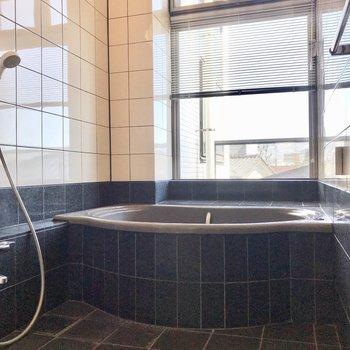 お風呂はなんだか懐かしいデザイン!